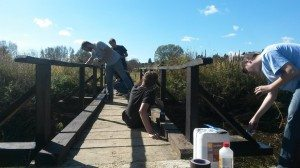 Bojanje mosta 2